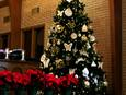 The Chrismon tree stands tall in the sanctuary of Cornelia United Methodist Church in Cornelia, Georgia. Photo by Claire DeLand, courtesy of Creative Commons.