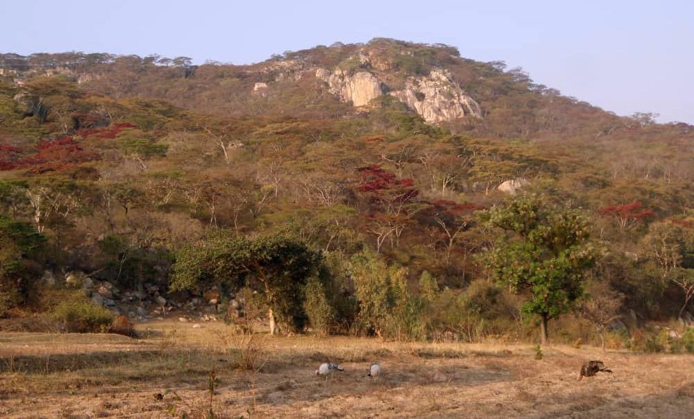Domboshawa Mountain, north of Harare, is one of the places where Zimbabwean United Methodists go to seek God's healing and grace. Photo by Chenayi Kumuterera.