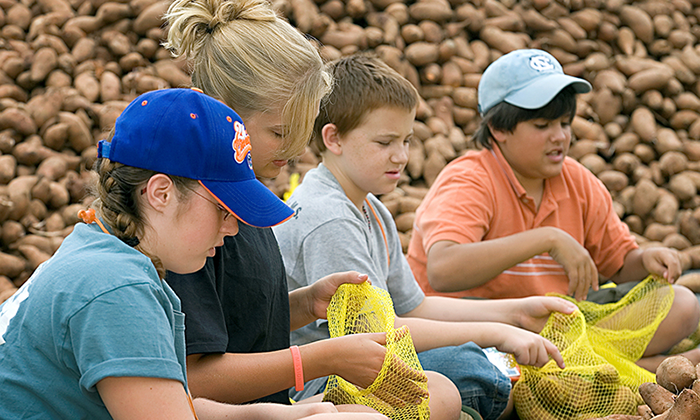 United Methodist youth bag sweet potatoes during a service project at Youth 2007 in Greensboro, N.C. From left are: Alexis Ward, Allison Kraft, Zach Wood and Connor Lewis of Messiah United Methodist Church in Springfield, Va. The hunger ministry, Society of St. Andrew, received 40,000 pounds of sweet potatoes that were packaged by volunteers and donated to area food banks.