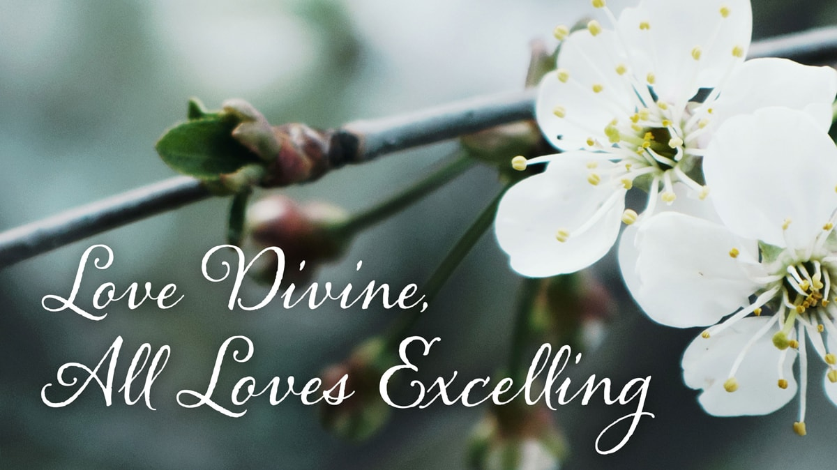 """Charles Wesley's """"Love Divine, All Loves Excelling"""" teaches about God's grace that fills us with love. Image by Kathryn Price, United Methodist Communications."""