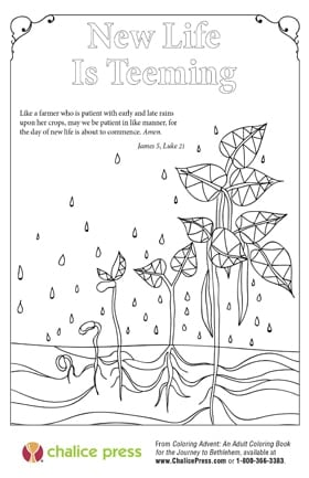 Image from Coloring Advent courtesy Chalice Press.