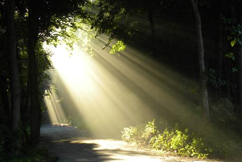 God lights our path when we are still enough to listen. Photo by Jim Starr.