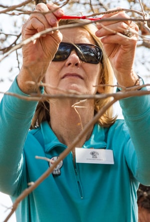 Cynthia Rives ties a prayer ribbon to a tree in honor of those killed during the Washita Massacre. Rives was representing United Methodist Women at the Oklahoma Indian Missionary Conference immersion experience. Photo by Ginny Underwood, UMNS.