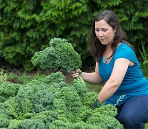 Rachael Porter harvests kale from the community garden at Concord United Methodist Church in Athens, W.Va. Porter, whose husband pastors the church, founded a nonprofit that will aid people in recovery by growing, processing and selling tea. Photo by Mike DuBose, UMNS