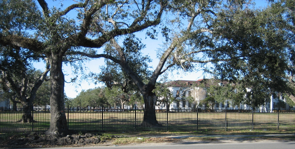 Portion of the Dillard University Campus on Gentilly Road, New Orleans, Louisiana. Photo by Infrogmation of New Orleans.