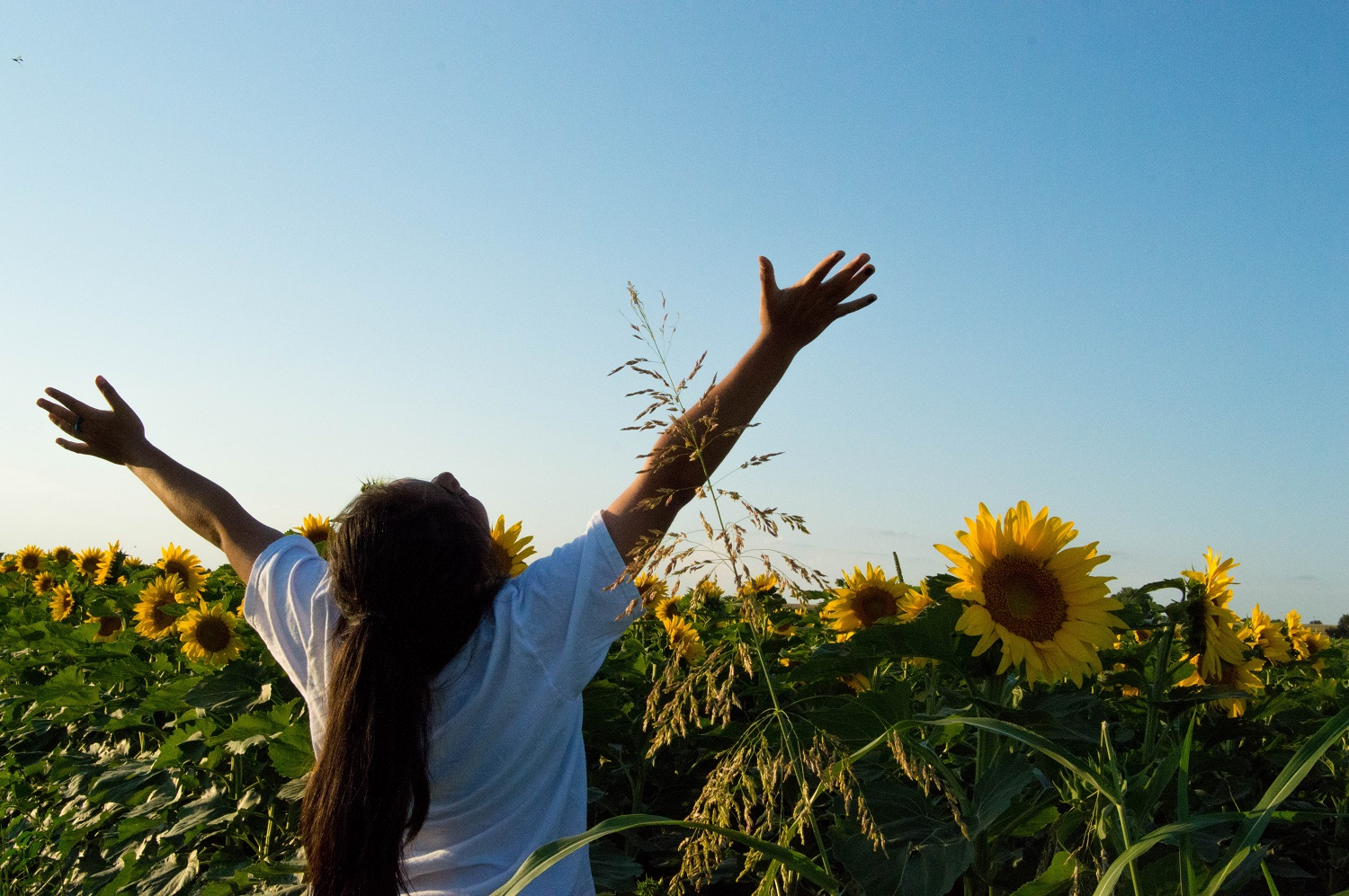 In a spirit of freedom and joy, Alyssa Underwood lifts her arms and face to the sun.  Photo by Ginny Underwood