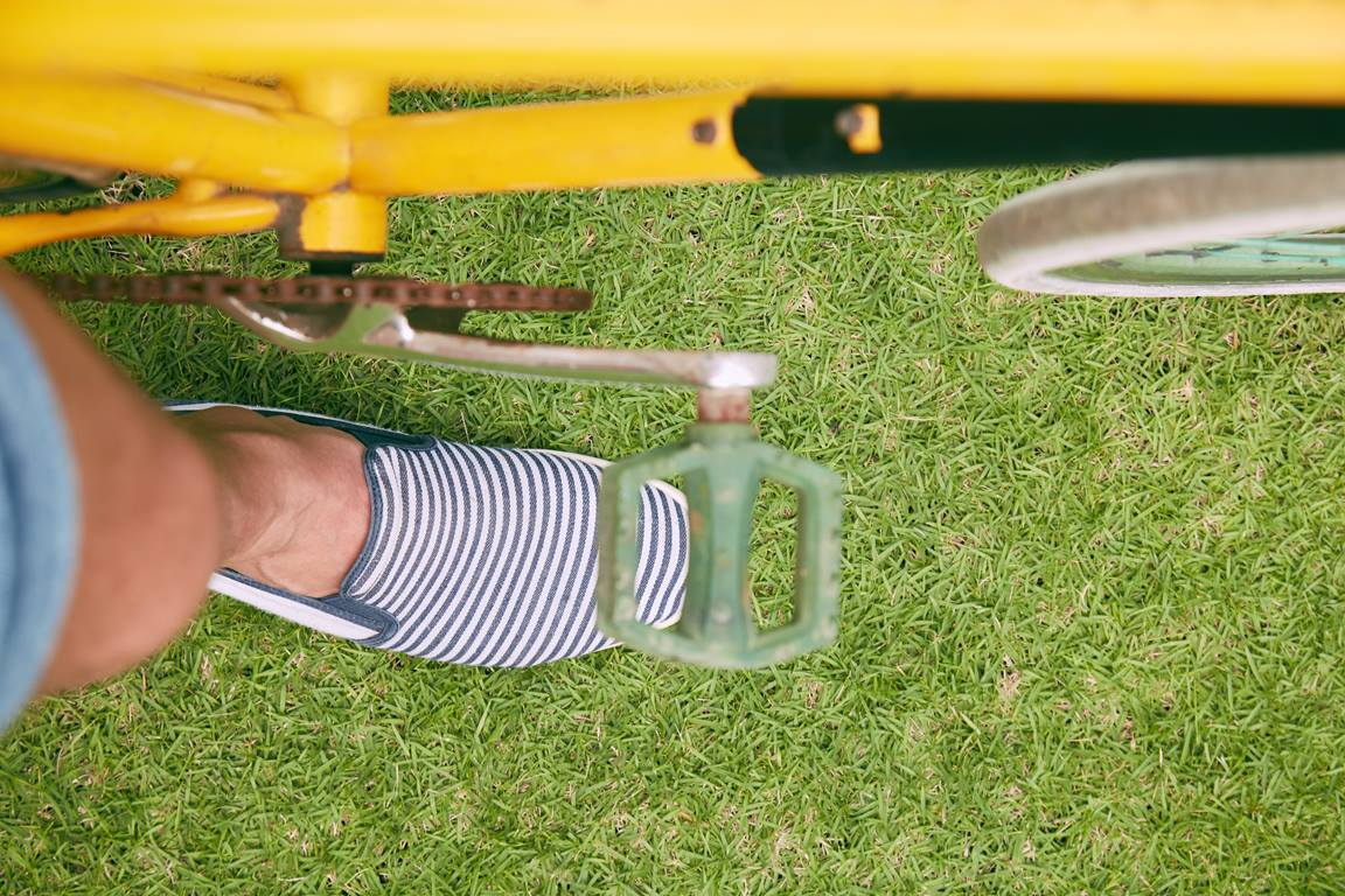 Uma bicicleta amarela forneceu relação e conexão