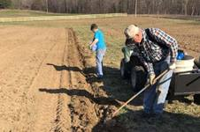 Lyn and Gene Saltzman plant the first potato crop in March 2021. Photo courtesy of Reelfoot Rural Ministries for Global Ministries.